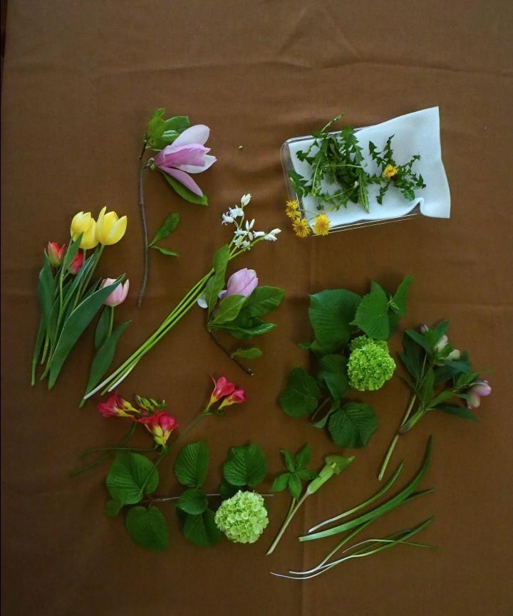 花材いろいろ